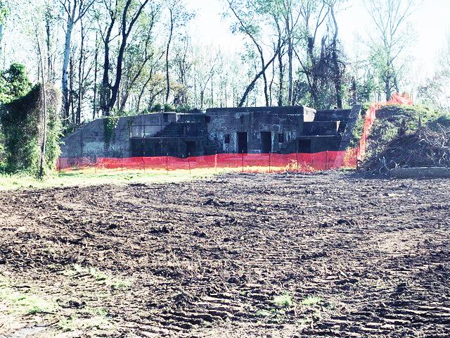 Fort DuPont Batter Elder